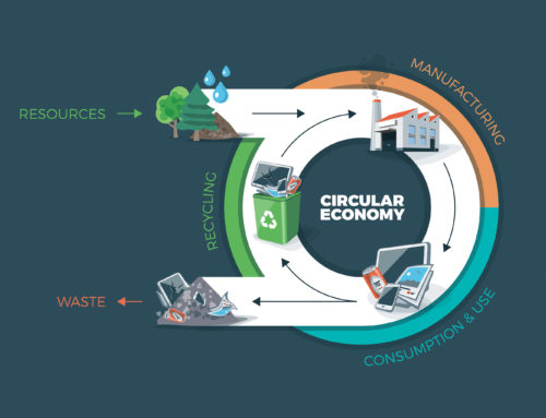 THE CIRCULAR ECONOMY: A DIFFERENT BUSINESS MODEL CAN WORK